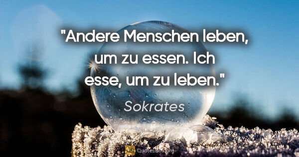 Sokrates Zitate Quotesboxorg